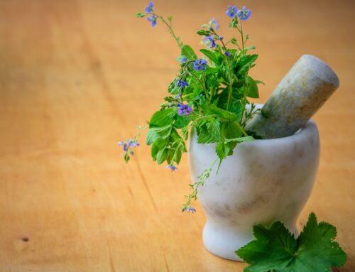 Homøopatisk medicin